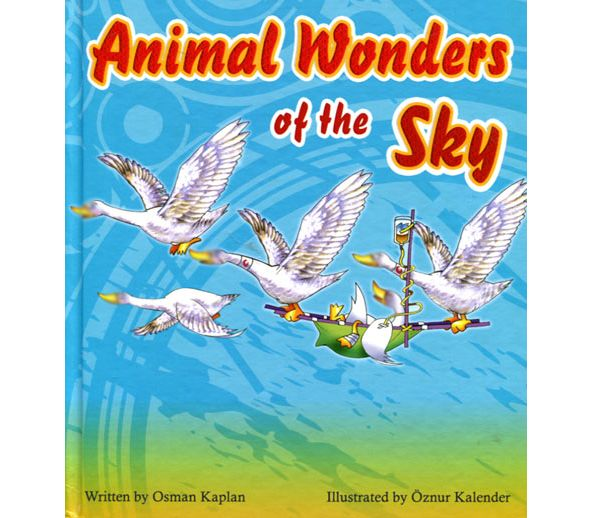 Children Youth Animal Wonders Of The Sky